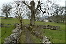 SK2276 : Footpath towards Eyam by Andrew Hill