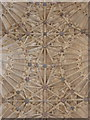 ST6316 : Sherborne: abbey fan vaulting (5) by Chris Downer