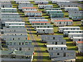 NT7970 : Coastal Berwickshire : Pease Bay Caravan Park by Richard West