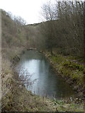 SK2274 : A pool in Coombs Dale by Andrew Hill