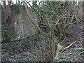 SU1997 : Walling, disused Thames and Severn Canal near Dudgrove Farm by Vieve Forward
