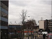 TQ3783 : Roundabout on Wick Lane by David Anstiss