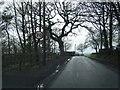 SJ5565 : Quarry Bank near Rowley Farm by Colin Pyle
