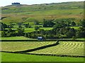 NY9325 : Farmland, Middleton-in-Teesdale by Andrew Smith