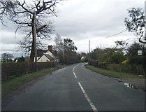 SJ5855 : Long Lane by Colin Pyle