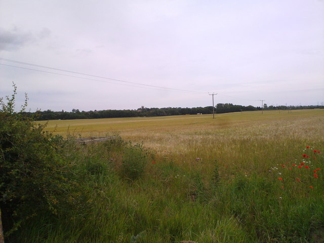 View across the fields towards Sedgefield