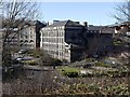 NZ2664 : Ouseburn from the east by Andrew Curtis