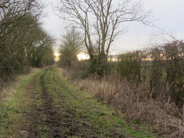Clamp's Lane, Carlton, Cambridgeshire (1)