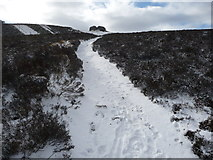 SJ1662 : The path up to the Jubilee Tower on Moel Famau in snow by Jeremy Bolwell