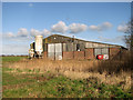 TG3818 : Shed at The Laurels, Ludham by Evelyn Simak