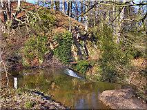 SJ8382 : River Bollin at Styal by David Dixon
