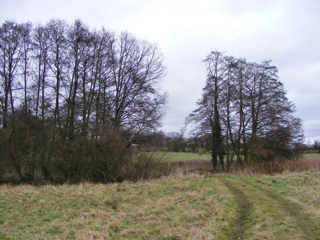 Chillington Footpath