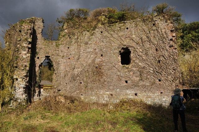 Mid Devon : Canonsleigh Abbey Remains