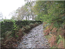 NY3204 : Byway and Cycle Route to Little Langdale by Les Hull