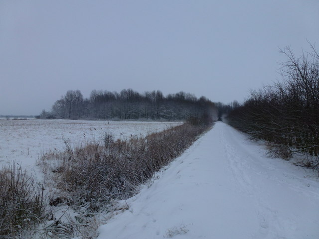 Snow covered footpath on the orchard walk