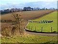 TL0005 : Farmland, Bovingdon by Andrew Smith