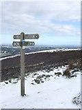 SJ1663 : Signpost on Clwydian Way by Bryan Pready
