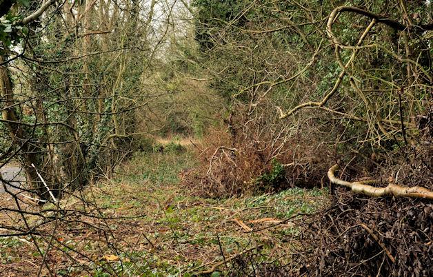 Old railway, Downpatrick (4 of 4)