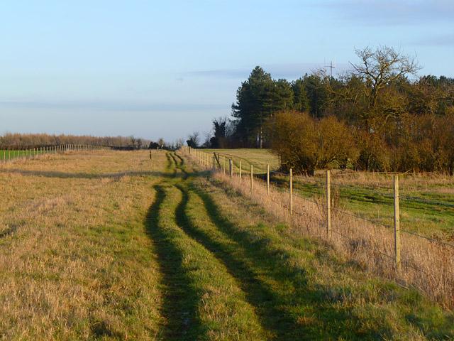 Track and farmland, Buckland