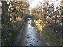 SP0483 : The Bourn Brook, upstream of Bournbrook Road, Bournbrook by Phil Champion