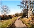 SJ9493 : Trans Pennine Trail by Gerald England