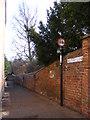 TM3877 : Rectory Lane, Halesworth by Geographer