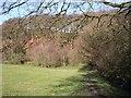 SJ5074 : Ridgeway Wood from the Sandstone Trail by Raymond Knapman