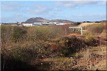 NT3271 : Derelict railway land near Millerhill by Jim Barton