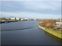 NZ4619 : River Tees by JThomas