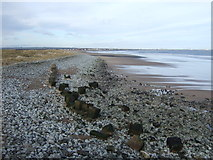 NZ5428 : Beach and defences, North Gare Breakwater by JThomas
