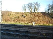 SJ8730 : Norton Bridge Junction by N Chadwick
