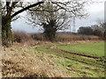 SU7134 : Bridleway South of Upper Farringdon by Colin Smith