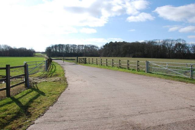 The long gated  Entrance drive to Bangley House Farm