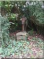 SP0705 : Village pump, Barnsley by Vieve Forward