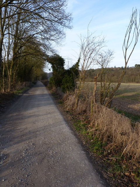 Along NCN45 - the old railway line