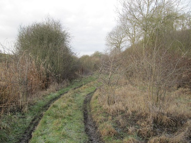 Track in the railbed