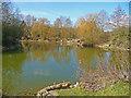 SU3446 : Charlton - Charlton Lakes Drought by Chris Talbot