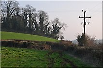 ST0215 : Mid Devon : Grassy Field & Footpath by Lewis Clarke