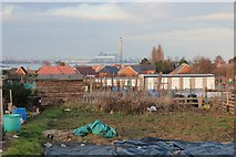 TQ7968 : Woodlands Road allotment by Oast House Archive