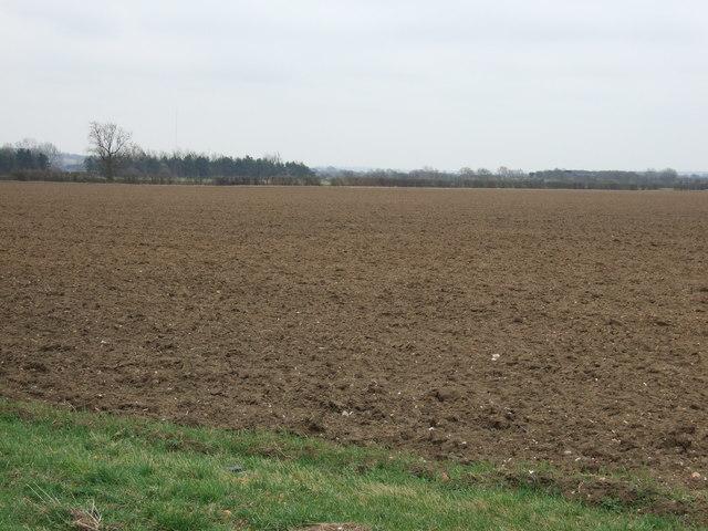 Farmland, Moor Farm