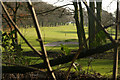 SP0584 : Golf course at Edgbaston by Phil Champion