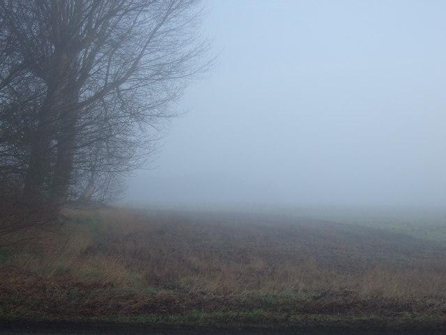 Farmland off the B1429