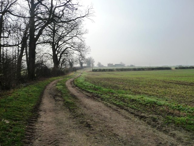The track to Belle View Farm