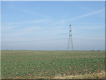 SK9859 : Crop field, Boothby Graffoe by JThomas