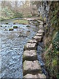 SK1273 : Cheedale Stepping Stones by Neil Theasby