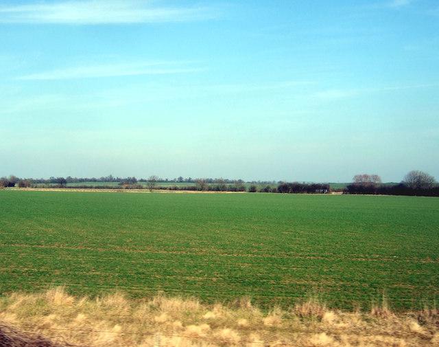 Farmland near Saxilby