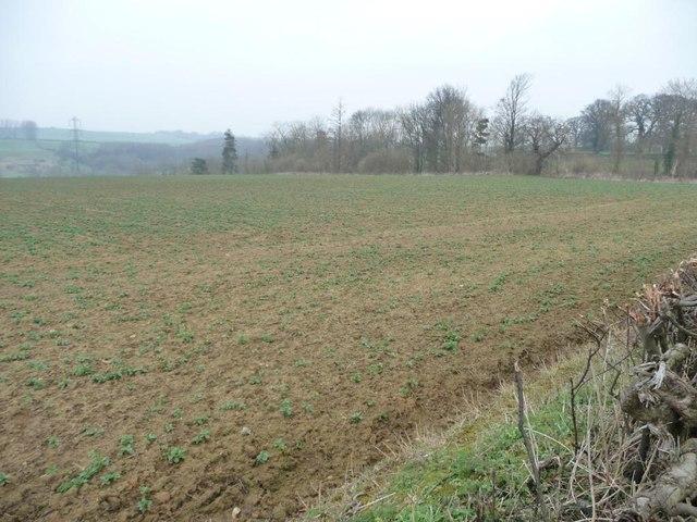 Farmland on the north side of High Lane