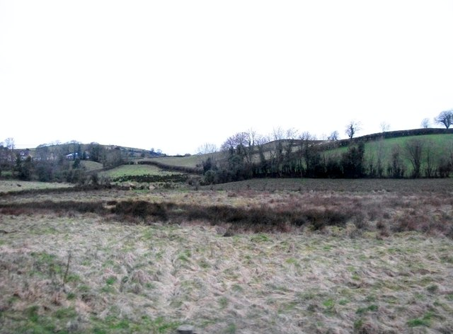 Rough pasture north of the Brae Road