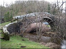 NZ7805 : Beggar's Bridge, off the Glaisdale to Egton Road (2) by Mike Kirby