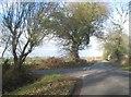 SU7854 : Junction on Pale Lane by Sandy B